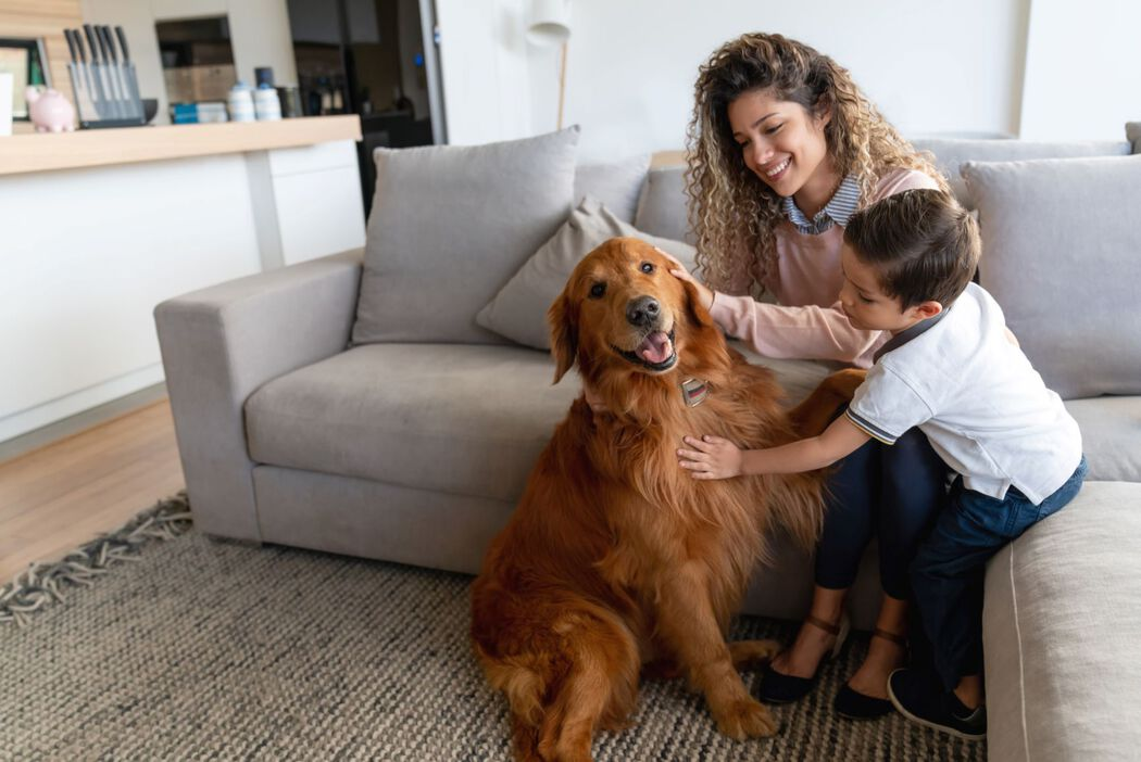 Mom and son with dog in living room