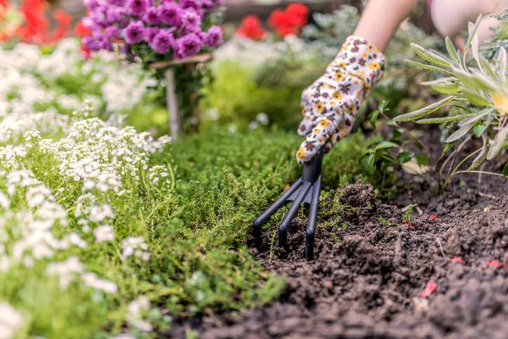 Cleaning up flower beds in preparation for selling a home