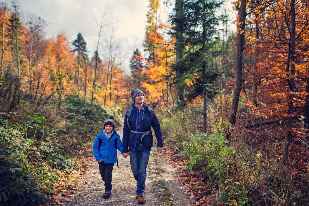 father and son in forest hiking in fall
