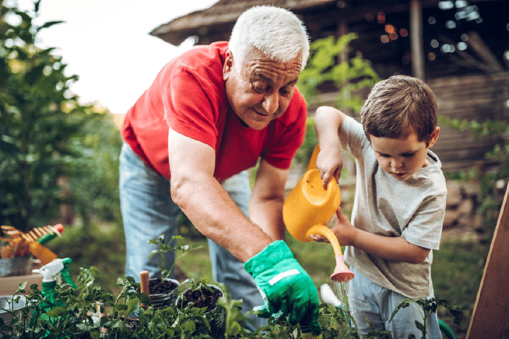 Retired grandfather gardening with a small boy