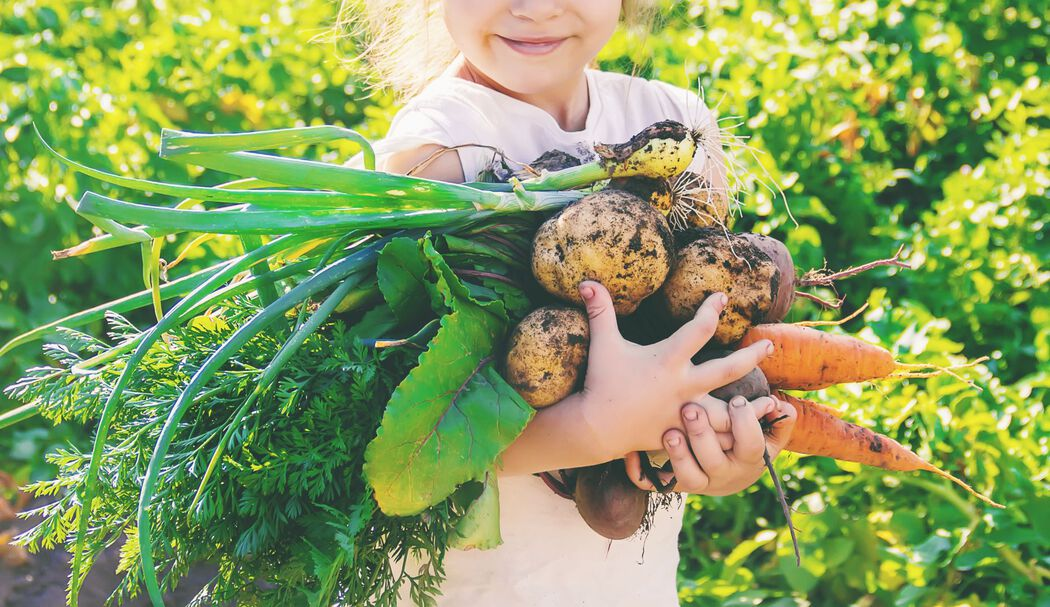 Young girl holding root vegetables